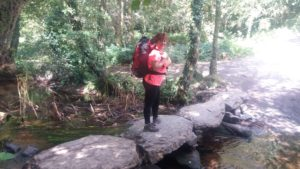 Camino de Santiago con Aromaterapia